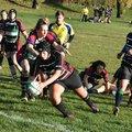 Ladies vs High Wickham Belles 11/11/18