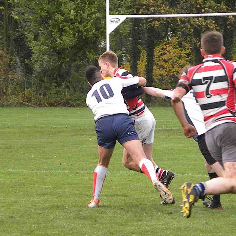 Northern Panthers v Novos