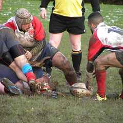 Northern Panthers 35 v Gosforth 2's 5