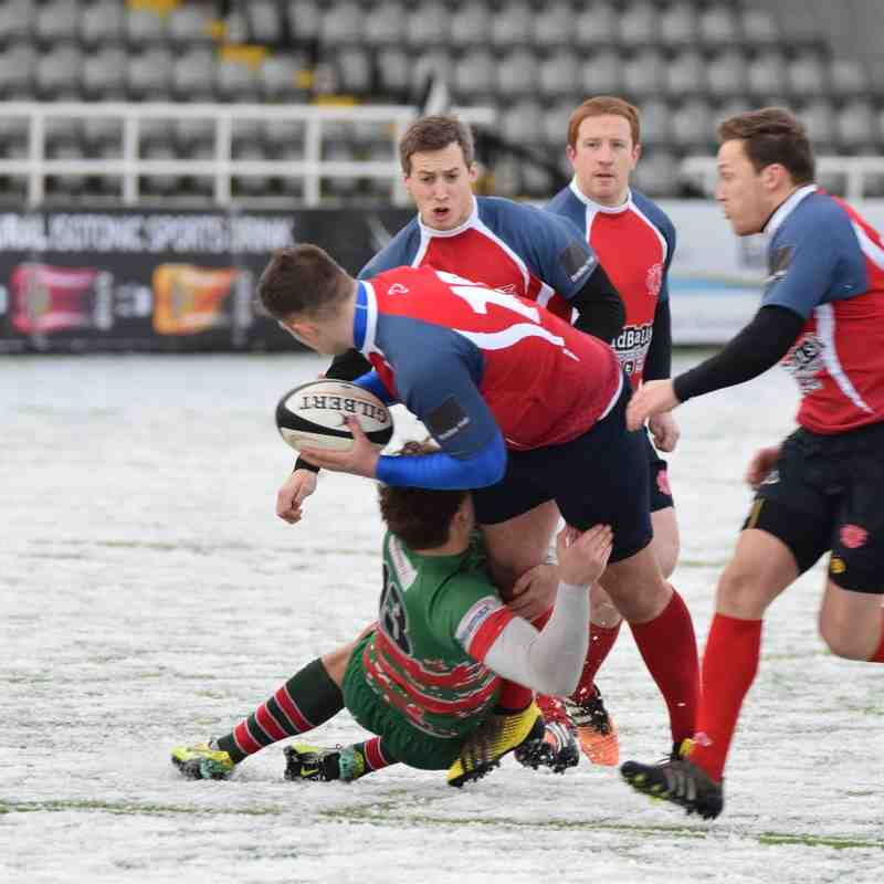 Northern Panthers v Morpeth Stags