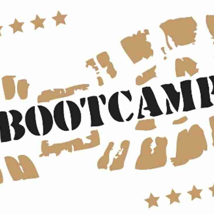 Livewire Free Bootcamp
