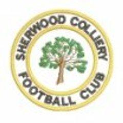 Sherwood Colliery FC (Notts. FA Senior Cup) 17/01/2017