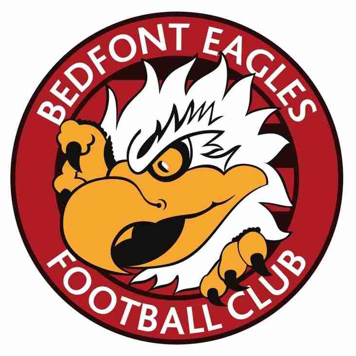 BEDFONT EAGLES 5 A SIDE CHAMPIONSHIP