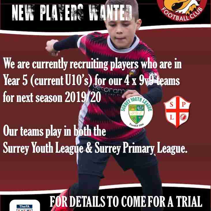 Calling Year 5 players, do you want to be an Eagle