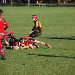 Spartans V Berry Hill (Under 11,s)
