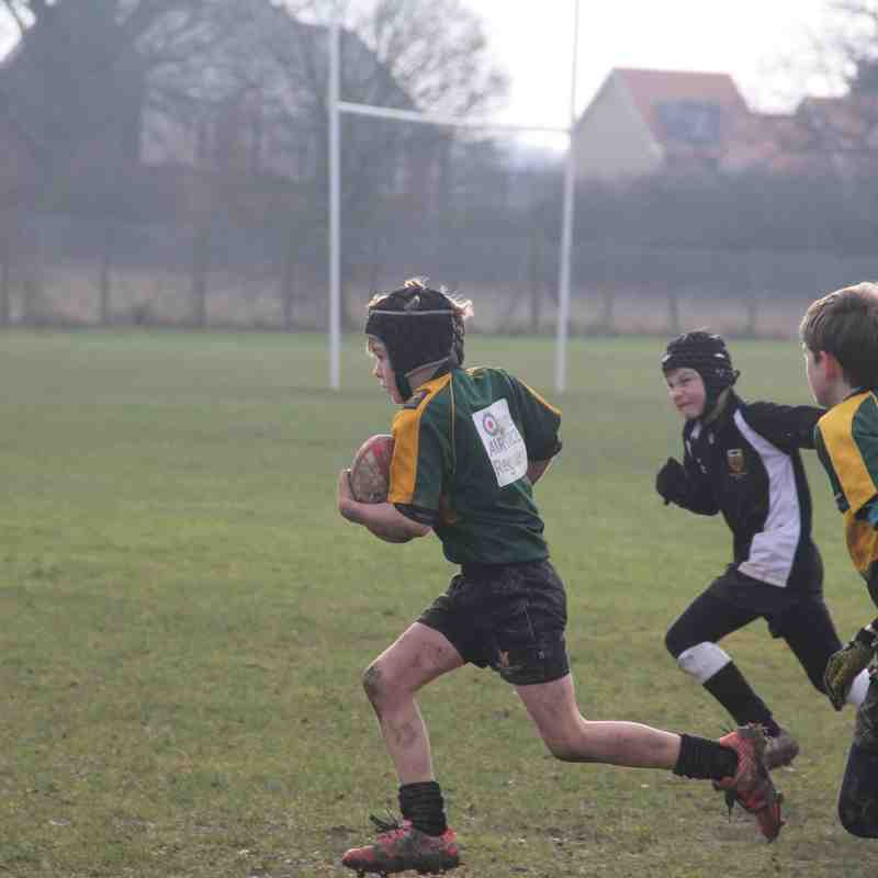 U10 Wolves vs Colchester Jan 15