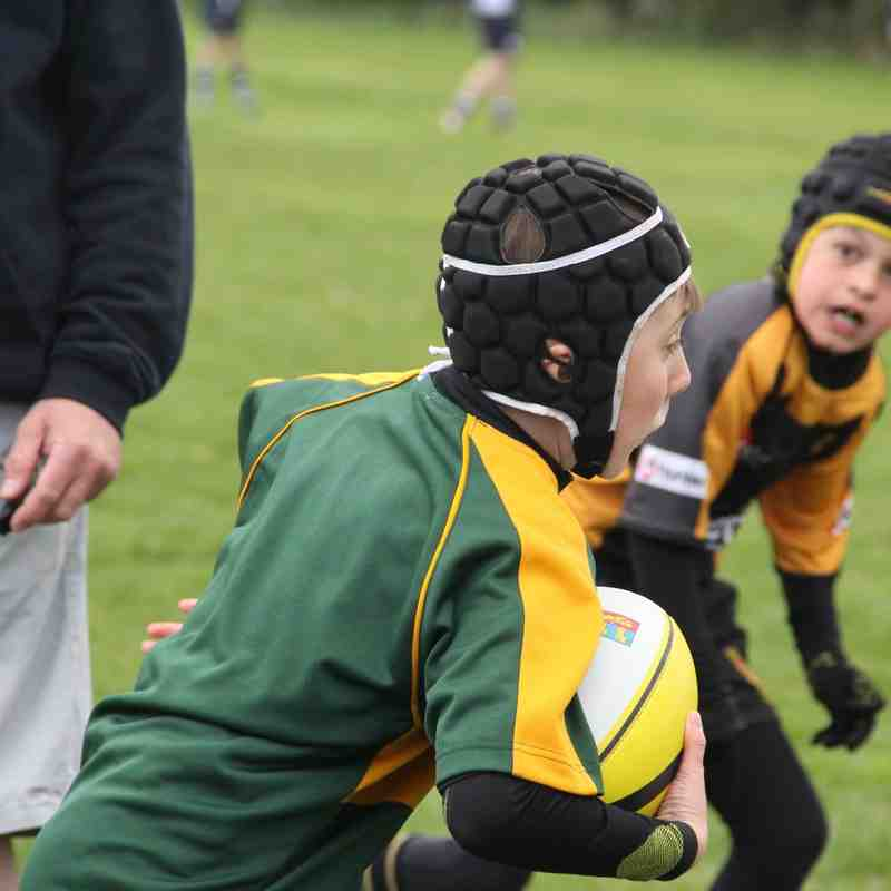 U10 Wolves @ Ipswich RFC Festival Apr 15