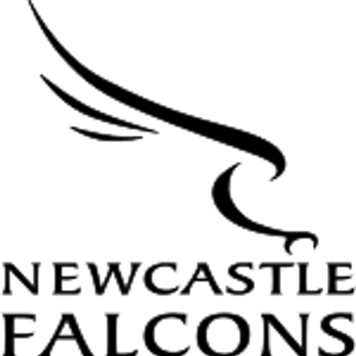 Do you require Falcons tickets? - Please use the Club portal<