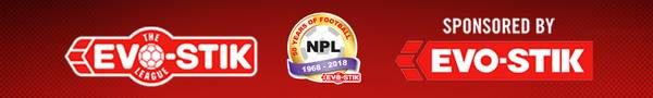 The Evo-Stik League