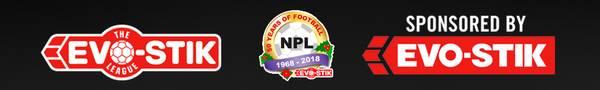 The Evo-Stik League