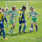 Girls U11s League Cup Winners