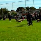 Brixham Vs Kingsbridge U7's 06/10/13