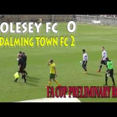 Molesey FC-Godalming Town FC 0:2 (20.08.2016)