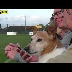 Haywards Heath Town vs Loxwood - 14th October 2017