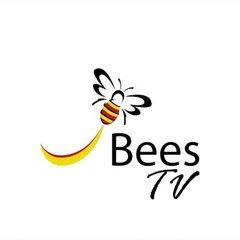 Bees v old Halesonians - Highlights