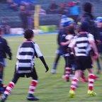 U9s @ Saracens Half time game - Clip 4