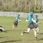 Tom Tingley`s second try