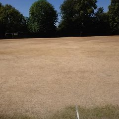 Scorched outfield from hottest summer on record!