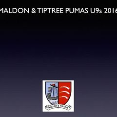M&T Pumas U9s vs Dunmow Tigers (a) 19.03.17