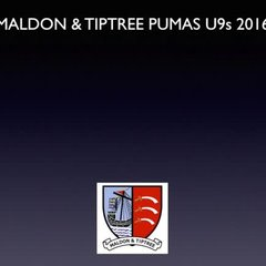 M&T Pumas U9s at Maldon Saints Cup Tournament - just the Pumas goals - 11.06.2017