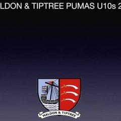 M&TP vs Chelmsford City Clarets (a) 08.10.17 720HD [4 min supercut]