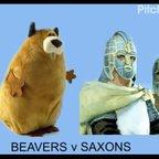 Beavers v Saxons