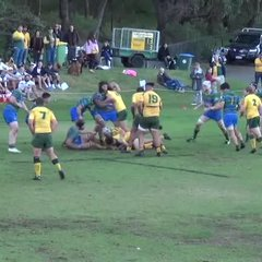 Tries of the week, Round 10