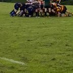 Harris turnover at scrum