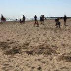 Senior Beach Training