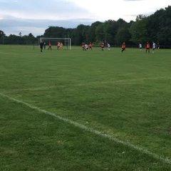 Wareham Rangers 0 Swans 1
