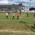 Swans 0 Cobham (Surrey) 2