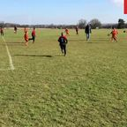 Stones Athletic Lions v Maldon & Tiptree