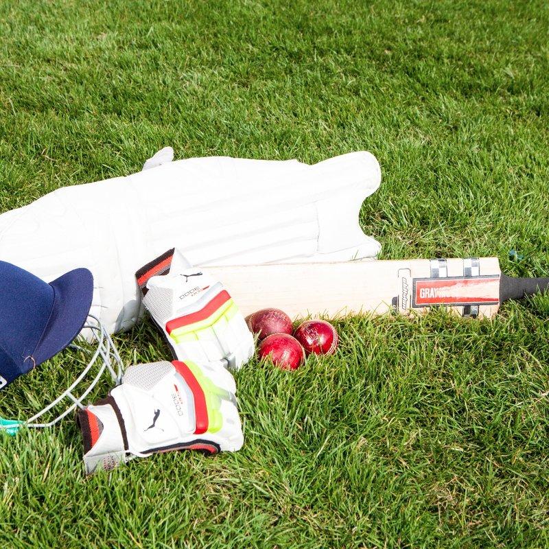 Halesowen Cricket Club Beer Festival | Vendors Invited to Apply