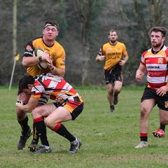 Wadebridge Camels v St.Austell Cornwall Cup s/f 23.2.19