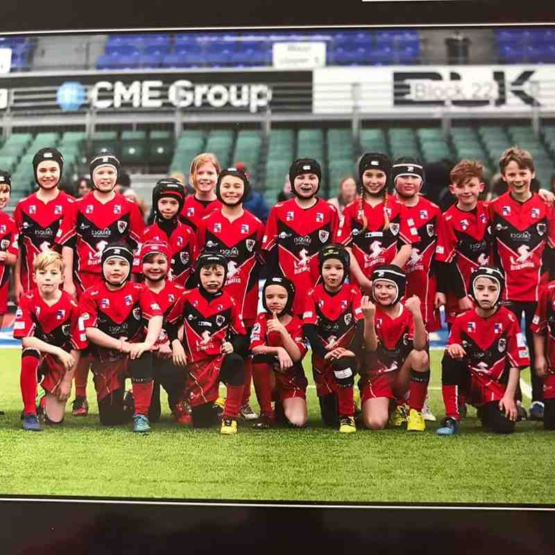 Under 9's and 10's Saracens tournament at Allianz park
