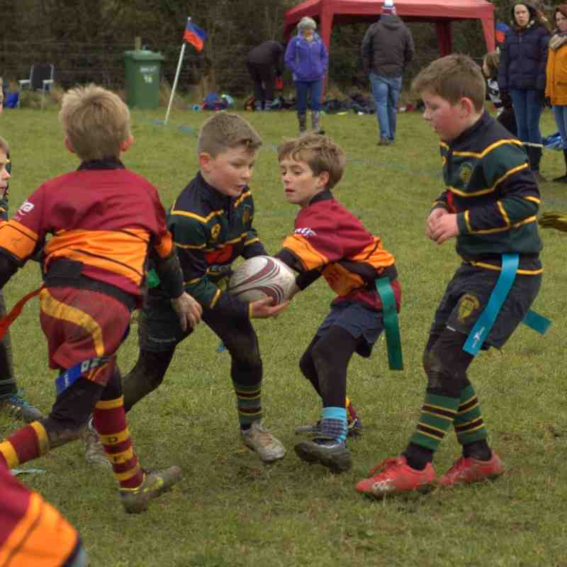 U8's Gloucester Cup 6th March 2016