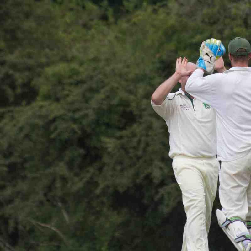 T20 XI vs High Beech - Cup Final