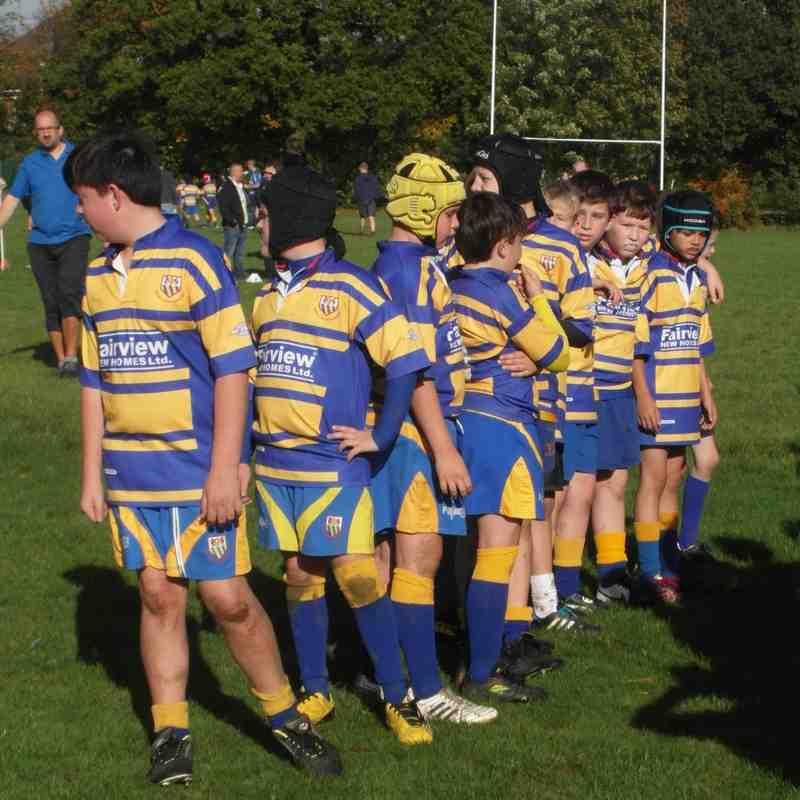 U12s v Old Grammarians & Watford - Oct 2014