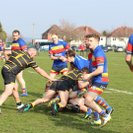 KC's rack up the tries in front of a bumper Presidents Day crowd