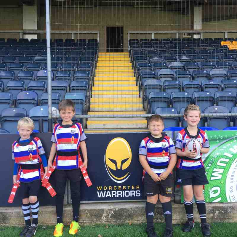 Worcester Warriors U7s Festival 14/10/17