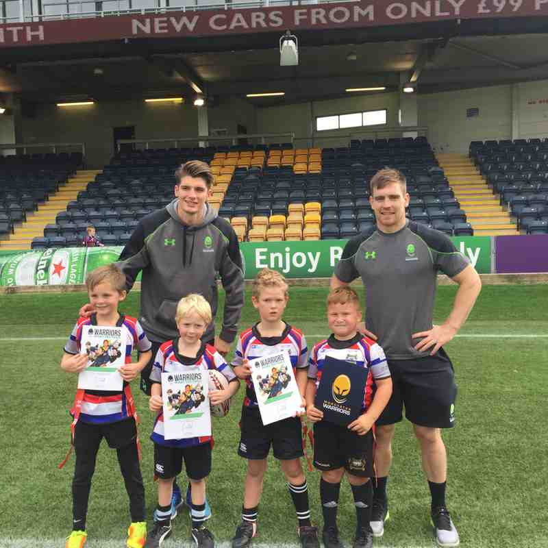 Worcester Warriors U7s Festival Pics - 14/10/17