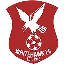Whitehawk