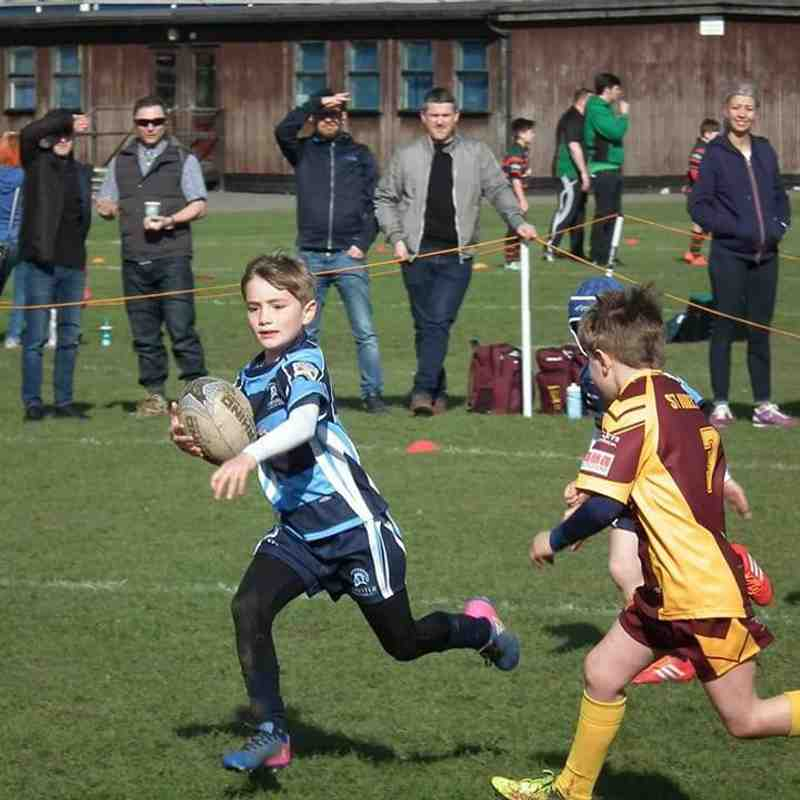 Chester Gladiators U8s v Wigan St Judes Golds