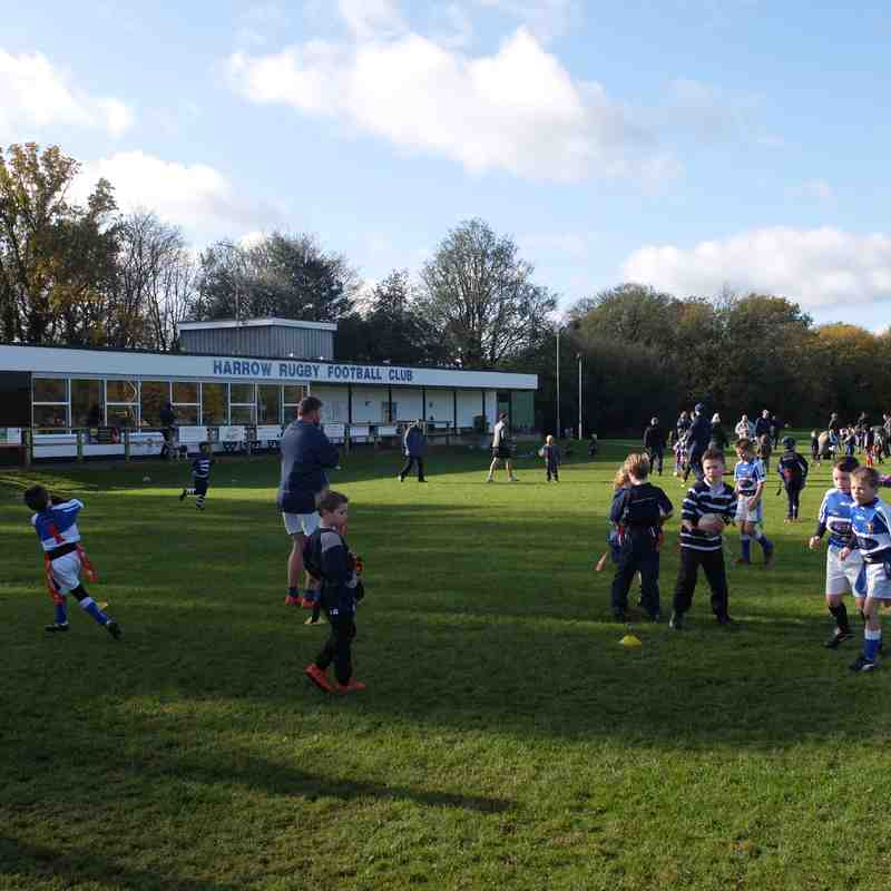 Harrow Minis v Hemel Hempstead 5th Nov 2017