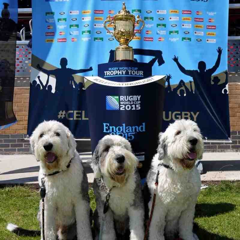 Rugby World Cup 2015 visits Moseley RFC