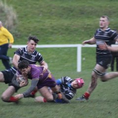 Tennent's NL1 - Musselburgh RFC v Marr Rugby (8.12.18)