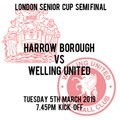 HARROW BORO 1  WELLING UTD 3