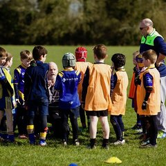 Ratoath minis in Spring Sunshine - 24th March 2018 (Tony Collins)