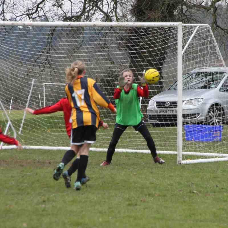 Tornadoes U12 Girls vs Tilehurst Panthers - 14th February 2015