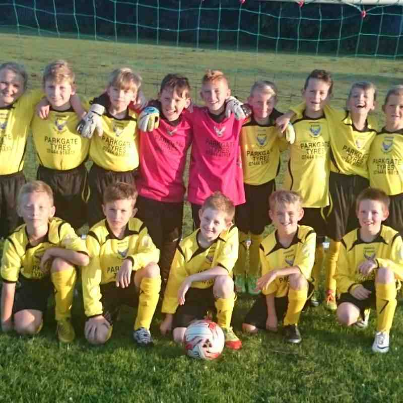 Hoyland Common Falcons U10s